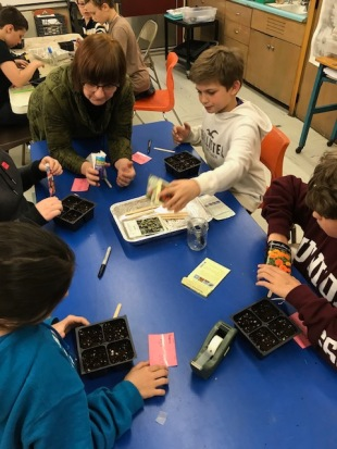 Seed Sowing with SES 1